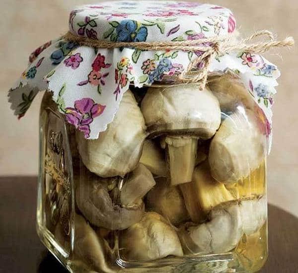 طريقة عمل مخلل عيش غراب - وصفة تخليل المشروم في المنزل